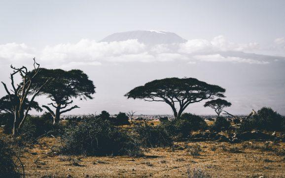 Los mejores lugares para visitar en África
